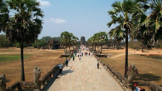Angkor Vat : Photo