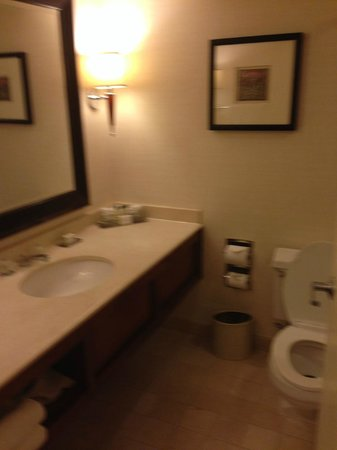 Doubletree Hotel Chicago Oak Brook: Bathroom