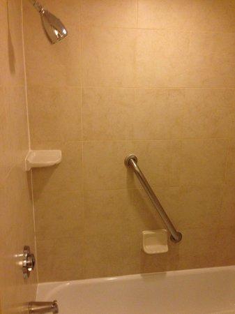 Doubletree Hotel Chicago Oak Brook: Shower