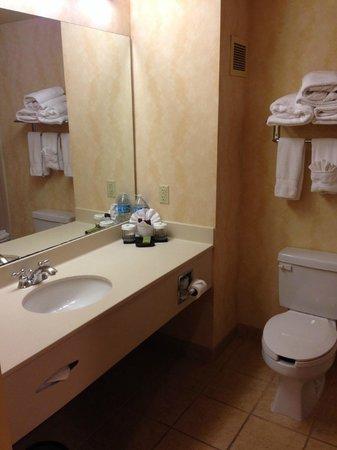 Embassy Suites by Hilton Northwest Arkansas : Bathroom