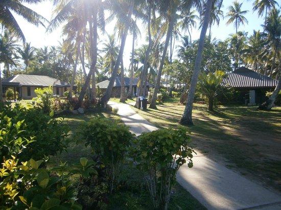 Studio Garden View Plantation Island Resort