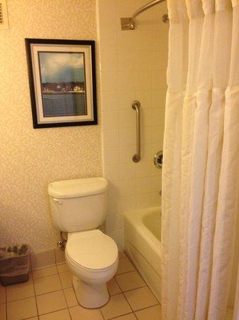 Hilton Garden Inn Islip/MacArthur Airport: Bathroom