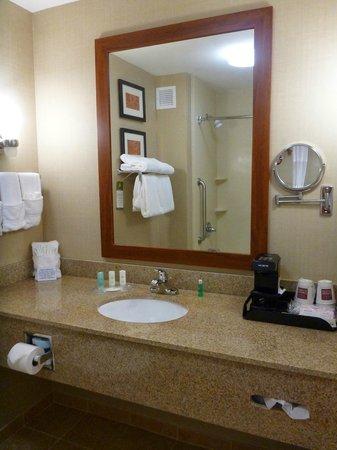 Comfort Suites Sarasota: Banheiro bom