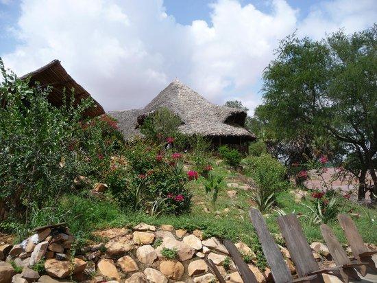 Kiboko Camp: kibokocamp