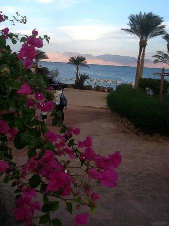 Tropitel Dahab Oasis: WALKWAY DOWN TO BEACH