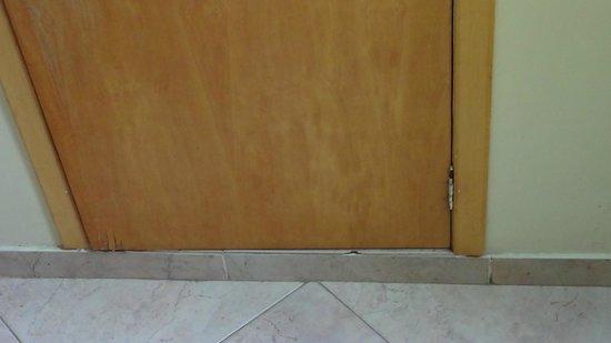 Hotel Beija Flor: Porta do armário II