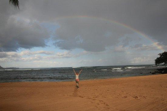 St. Regis Princeville Resort : beach - rainbow in november