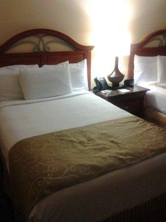 Rosen Centre Hotel: Beds
