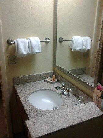 Rosen Centre Hotel: Sink