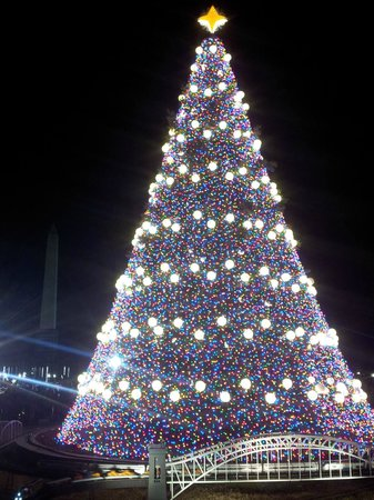 W Washington D.C.: Nat'l Christmas Tree and Washington Monument
