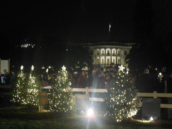 W Washington D.C.: White House South Lawn