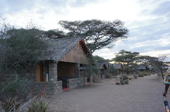 Ndutu Safari Lodge: Hut