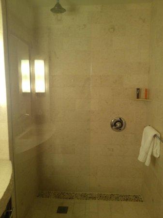 Kimpton Hotel Palomar San Diego : Rainforest shower