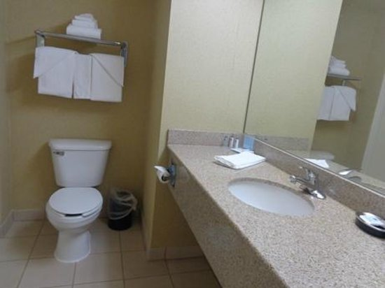 Hampton Inn San Marcos: bathroom