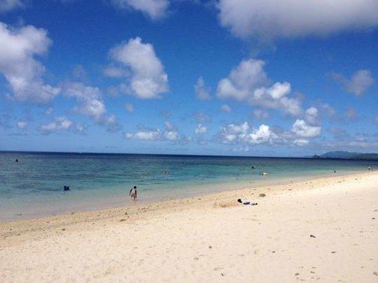 Yonehara Beach: 魚がいっぱいのビーチ