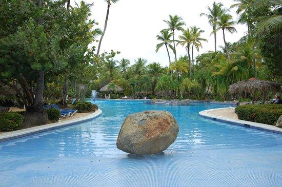 Paradisus Punta Cana Resort: Pool Area