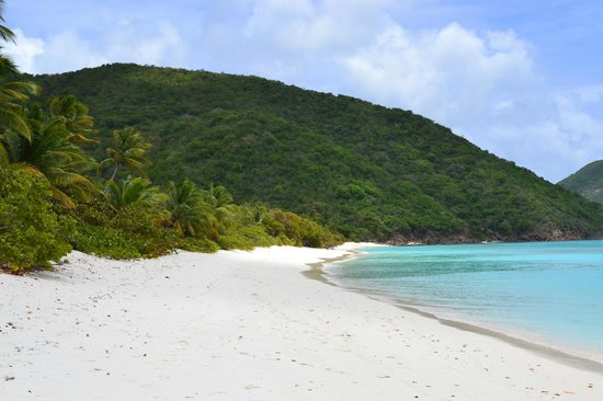 Guana Island : This beach just for us