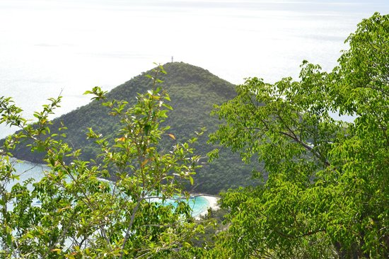 Guana Island: From the highest peak of the island (hike was mazing)