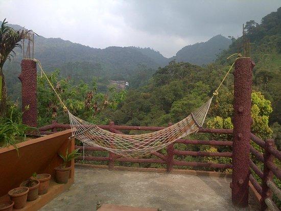 Wild Elephant Eco Friendly Resort : Relaxing environment