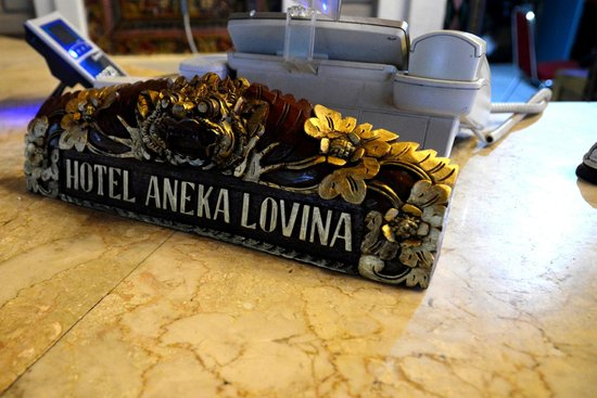 Aneka Lovina Villas & Spa : reception