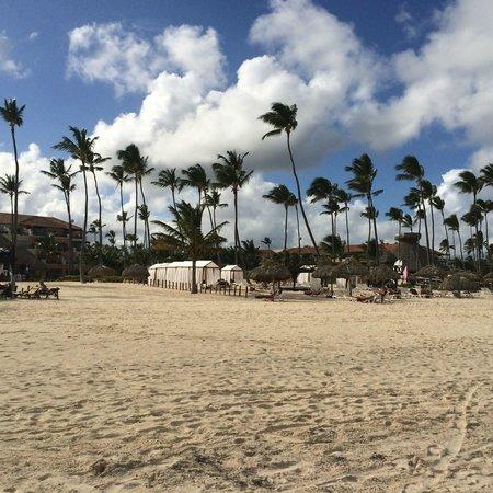 Secrets Royal Beach Punta Cana: View of the Preferred Beach Arear