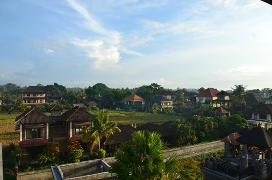 Hibiscus Cottages : Breakfast View
