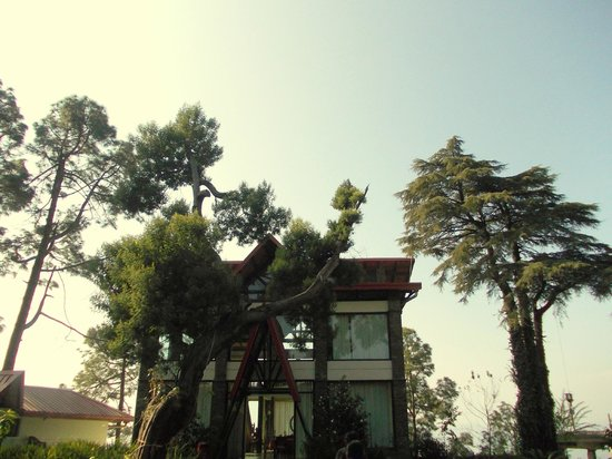 Imperial Heights: sun shines
