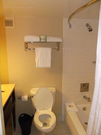 Sheraton Tampa Riverwalk Hotel: Towels