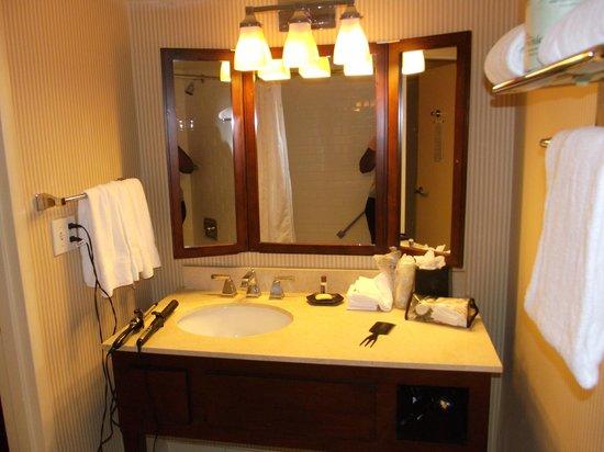 Sheraton Tampa Riverwalk Hotel: Vanity