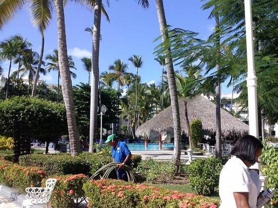 Vista Sol Punta Cana : un personnel très actif.