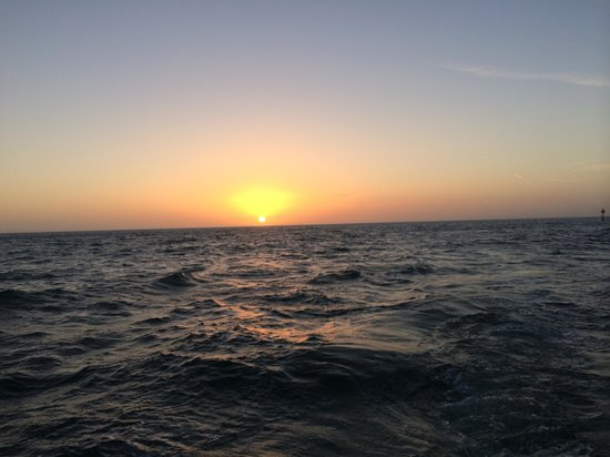Little Toot Dolphin Adventures: Beatifulviews of the sun setting and great sightings of dolphins