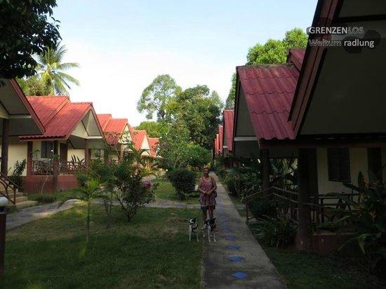 Wonderful Resort : Anlage