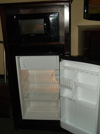 The Barrymore Hotel Tampa Riverwalk : Mini Fridge