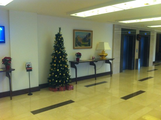Hotel Imperial : Christmas tree
