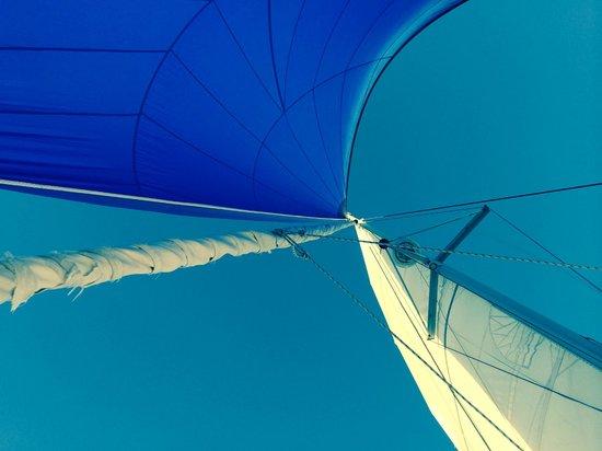 Sun Rays Tours: Sailing away
