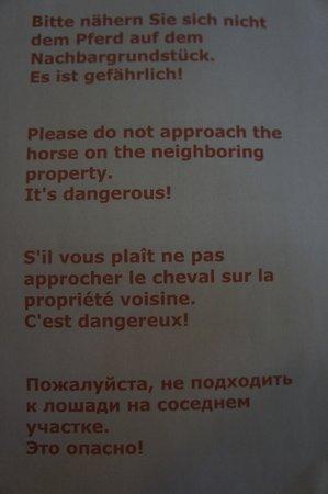 Hydramis Palace Beach Resort: Объявление!) Осторожно!!! Опасная лошадка!!!