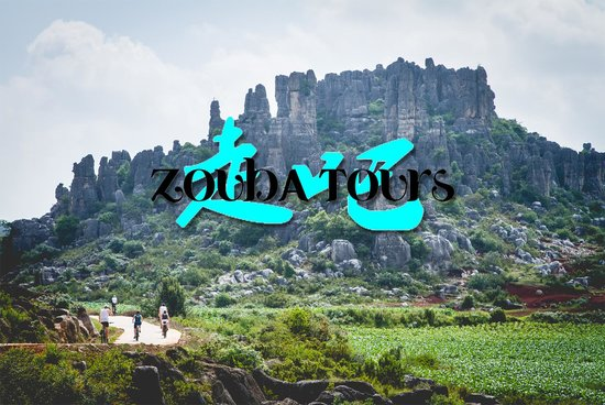 Zouba Tours-Day Tour