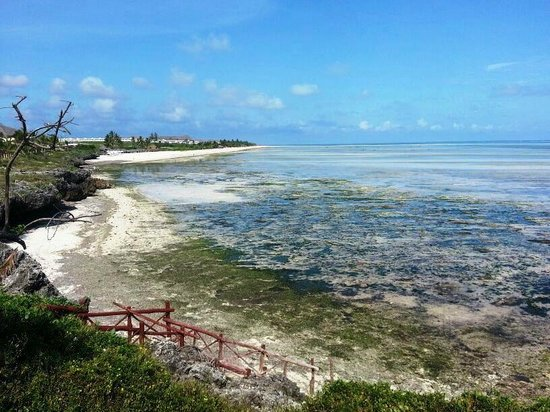 Ora Resort Watamu Bay: Inizia la bassa marea...