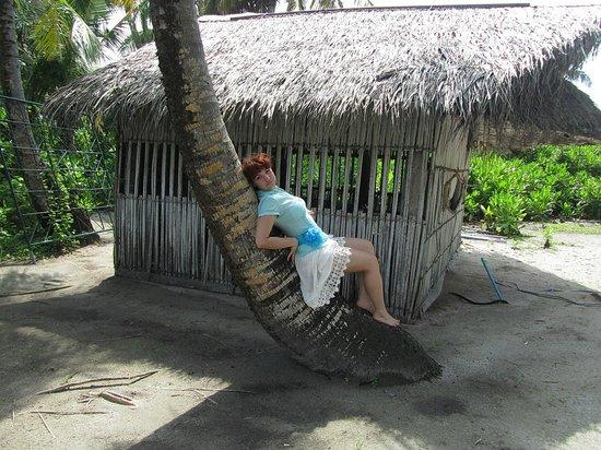 Holiday Island Resort & Spa: Соседний необитаемый остров