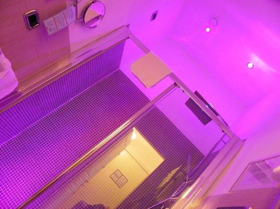 The Five Oscars Inn : Bathroom
