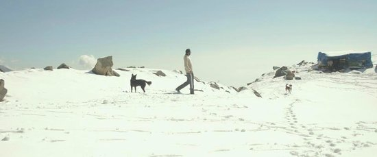Triund Hill: me with dogs at Truind