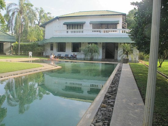 Horathapola Estate : Side view of the house with pool