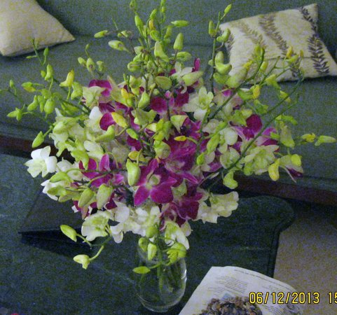 Benaulim, India: Complimentary flowers! Thanks, guys!