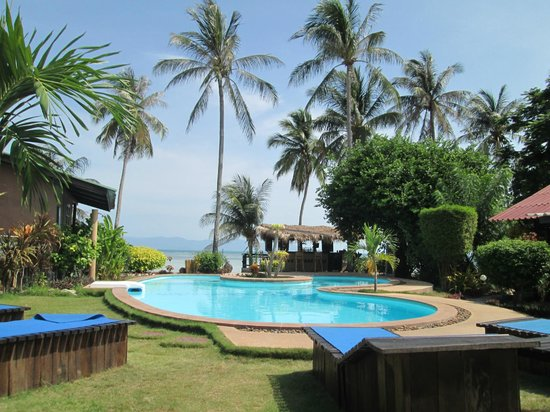 Phangan Beach Resort : Piscine