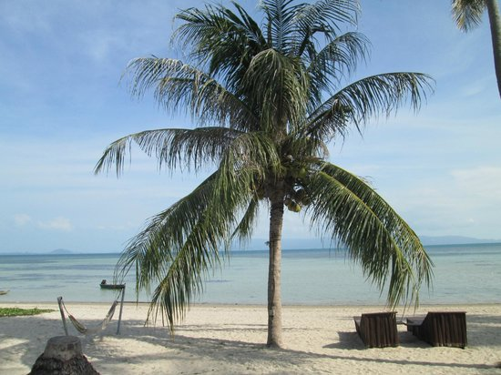 Phangan Beach Resort : Plage