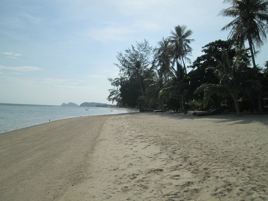 Phangan Beach Resort: Plage