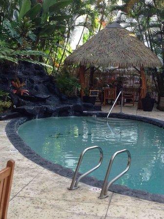 Aqua Bamboo Waikiki : pool area