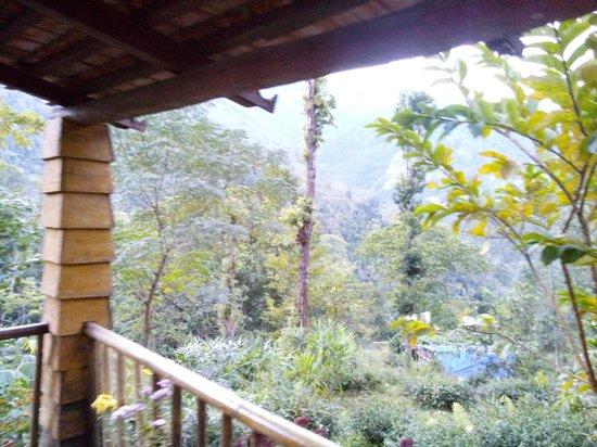 Tathagata Farm: View from Room