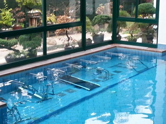 Olympia Terme Hotel: Water fitness!!!