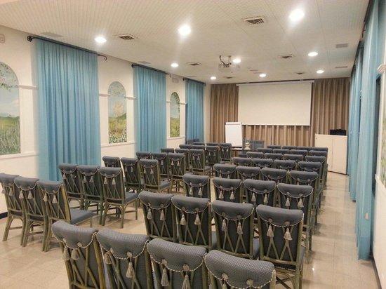 Olympia Terme Hotel : La sala conferenze!